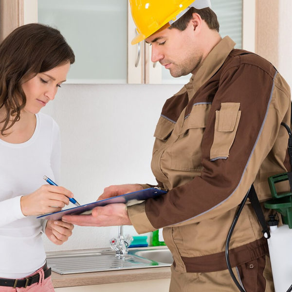 What happens at a Building and Pest Inspection?