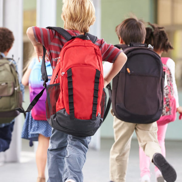 Which Brisbane suburbs have the best primary schools?