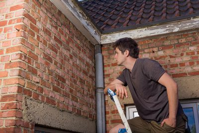 How do you know if  your dream home is pest free?