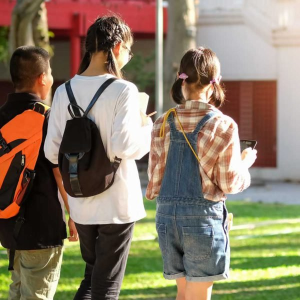 Top 10 Brisbane school zones for house price growth